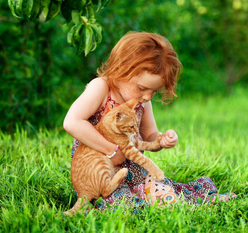 Little girl playing with pet cat outdoors in the garden. Countryside view. Happy kid is sitting on the green grass in summer day